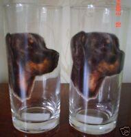 Doberman Drinking Glass Pair