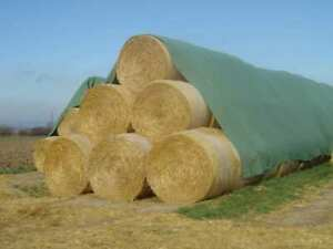 Toptex Strohvlies und Heuvlies grün 9,8 x 12,5 m (1 Rolle) Abdeckvlies Vlies