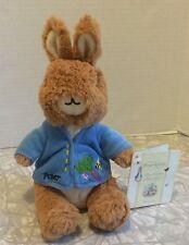 Plush Peter Rabbit Bean Bag Beanie Barnes & Noble 2007