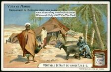 Morocco Bedouin Oasis Desert Tent Camp Palms c1905 Trade Ad Card