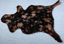GOAT Western taxidermy Hide Rug Natural Pattern Fur Goat Hide Rode SA-5170
