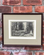 Norway Maine Wooded Landscape Photograph By Vivian Milner Akers. Signed. 1920