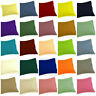 Soft 300TC EGYPTIAN COTTON 2PillowCase European/Standard/Queen/King SOLID COLOR