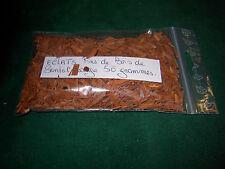 Eclats fins de bois de santal rouge - 50 grammes