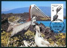 VIRGIN ISLANDS MK WWF FAUNA PELIKAN PELICAN MAXIMUMKARTE MAXI CARD MC CM ar48