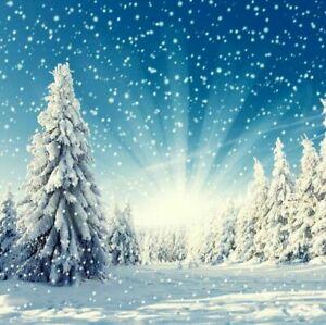 3x5/5x7ft Vinyl Backdrop Snow Christmas Tree Gift Photo Photography Background