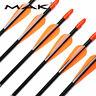"US 12PCS 31"" Fiberglass Arrows Shaft Plastic Fletched 7mm Target Hunting Archery"
