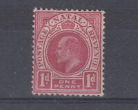 Natal KEVII 1902 1d Carmine SG128 MLH J3982