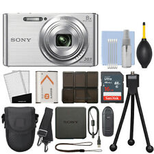 Sony Cyber-shot DSC-W830 20.1MP Digital Camera Silver + 16GB Accessory Kit