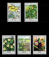 USSR RUSSIA STAMP/MNH-OG. Full set of 5 - Flowers. Complet - Fleurs. 1975