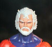 HEAD ONLY Marvel Legends Custom painted Head Magneto beard
