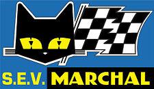 Motorsport AUTO ADESIVO VINILE Cat & Bandiera RALLY SPORT RALLYCROSS Sponsor Decalcomania