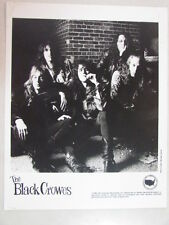 BLACK CROWES SHAKE YOUR MONEY MAKER CD/LP ERA 1990 DEF AMERICAN 8x10 PROMO PHOTO