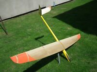 RC glider Aura Blejzyk  F3J/F3B 3,0M