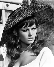 """Claudia Cardinale In The Film """"Don'T Make Waves"""" - 8X10 Publicity Photo (Ab-146)"""