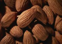 A1 Almond Nuts Poster Art Print 60 X 90cm 180gsm Almonds Food Yummy Gift #16932