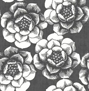 A−Street Prints by Brewster 2763-24206 Moonlight Fanciful Black Floral Wallpaper