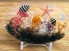 Tropical Florida ocean sun catcher beach art novelty sea shells paperweight ss61