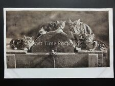 Cat Theme Depicts MOTHER & KITTENS ON A GRINDING WHEEL c1905 by Herriot Series