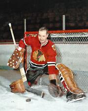 Chicago Blackhawks GLENN HALL Glossy 8x10 Photo NHL Hockey Print Poster HOF 75
