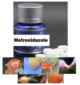 Fish Fungus Metro nidazole Aquarium Treatment Anti Gill Parasites