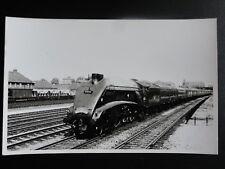 LNER No.60024 KINGFISHER Steam Locomotive (The Elizabethan) RP Photocard 110515