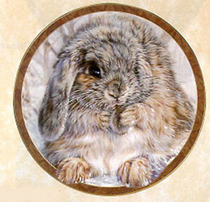 Bunny Tales Collection by Vivi Crandall Bradford Exchange Plate Quite an Earful