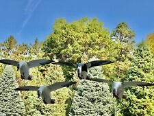 Snow Goose Decoys (Full Body Flyers)
