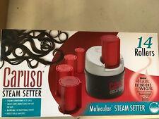 Caruso Traveler 14 Molecular Steam Hairsetter