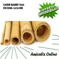 CANNE DI BAMBOO BAMBU' ALTEZZA CM 210 DIAMETRO MM. 24/26 CONFEZIONE DA 10 PZ.