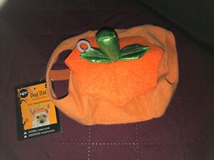 Simply Dog, Dog Hat, Pumpkin, L/XL