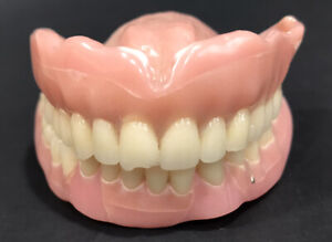 Vintage Dentures UPPER & LOWER full set false teeth Nice Set