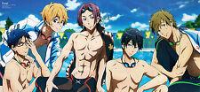 "Gratis!, iwatobi Swim Club Anime Manga Yaoi panorama impresión Cartel 28,1 x 13"""