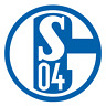 SCHALKE 04 KFZ KLEINER AUTOAUFKLEBER STICKER RUND 3,5cm AUTO AUFKLEBER S04 AUTO