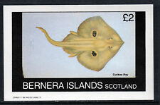 GB Locals - Bernera 3761 - 1982 CUCKOO RAY  FISH imperf deluxe sheet unmounted