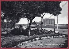 SASSARI OLBIA 13 GIARDINI - CAPITANERIA DI PORTO Cartolina viaggiata 1956