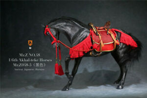 Mr.Z 1/6 Black Akhal-Teke Horses Animal Model MRZ048-5 Fit 12'' Solider Figure