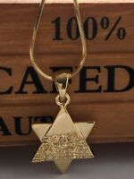 Star of David W/ Jerusalem wall Goldtone Necklace  Jewish symbol Judaica Gift