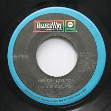 Rock 45 Country Coalition - How Do I Love You / Time To Get It Together On Blues