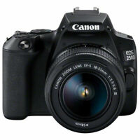 Canon EOS 250D / SL3 with EF-S 18-55mm f/3.5-5.6 III Lens (Black)