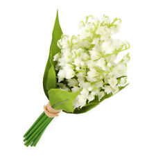 Artificial Silk Lily of the Valley Bundle White 10 Inches