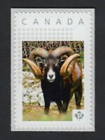 MOUFLON = RAM = Picture Postage stamp MNH Canada 2016 [p16/01sn2]