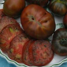 Paul Robeson Tomato Seeds
