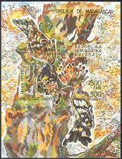 Madagascar/Malagasy 1992 Hoopoe/Birds/Nature/Wildlife IMPERF (1v) m/s b1759