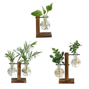 Plant Glass Vase Hydroponic Flower Pot Wooden  Stand Terrarium Display-Organiser