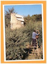 LES MEES (04) MOULIN Fortuné ARIZZI / LE MAS DES PINS / PIGEONNIER & OLIVIERS