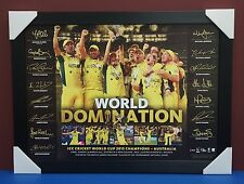 2015 ICC Cricket World Cup Champions Australia World Cup Domination Print Framed