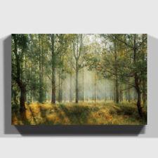 Forest Multi-Colour Art Prints