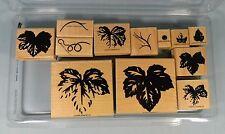 Stampin Up Rubber Stamp Set - Fine Vine 2000 Set of 12