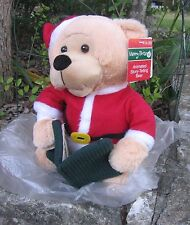 """11"""" Merry Brite Animated Story-Telling Bear- Christmas Holiday toy NWT   A"""